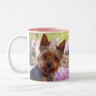 Yorkshire Terrier Two-Tone Coffee Mug
