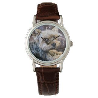 Yorkshire Terrier Watch