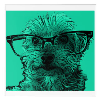 Yorkshire Terrier with Glasses Acrylic Wall Art