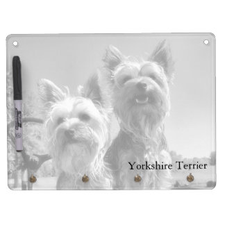 Yorkshire Terriers, Black & White, Horizontal Dry Erase Whiteboards