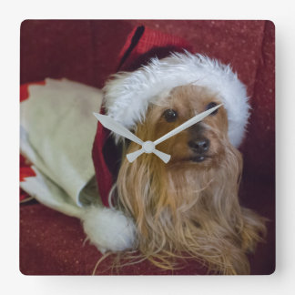 Yorkshire (yorkie) / Silky Terrier Christmas Clock