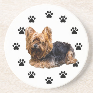 Yorshire Terrier Coaster