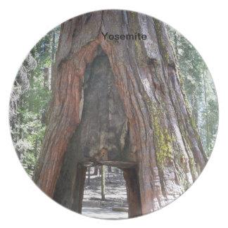 Yosemite 5 plate