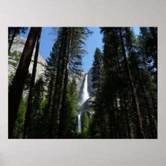 Yosemite Falls and Woods in Yosemite National Park Poster