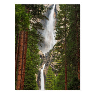 Yosemite Falls, California Postcard