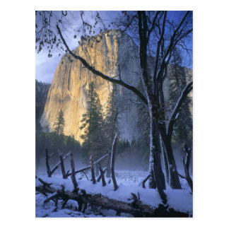 YOSEMITE NATIONAL PARK, CALIFORNIA. USA. Light Postcard