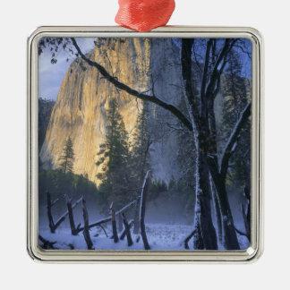 YOSEMITE NATIONAL PARK, CALIFORNIA. USA. Light Silver-Colored Square Ornament