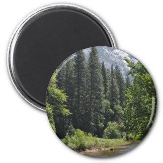 Yosemite National Park Magnet