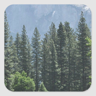 Yosemite National Park Square Sticker