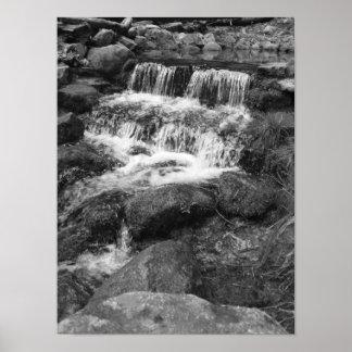 Yosemite Spring Print