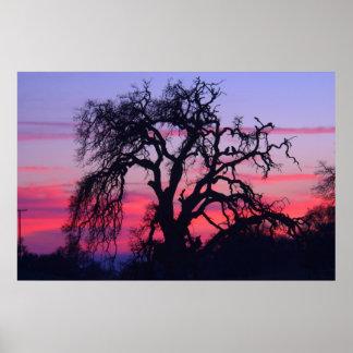 Yosemite Sunset Poster