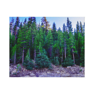 Yosemite Valley Forest & Sky Canvas Print