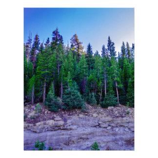 Yosemite Valley Forest & Sky Letterhead