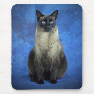 Yoshi the Siamese Kitty Cat Kitten Mousepad