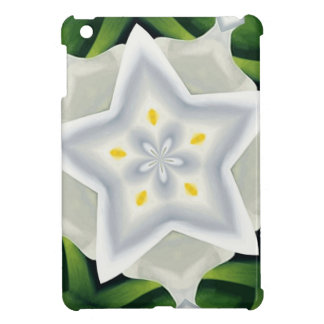 You Are A Star Case For The iPad Mini