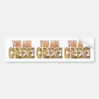 You Are Blue Cheese Bumper Sticker