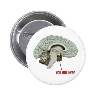 You Are Here Pinback Button