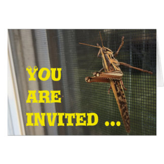 You are invited to come hang out, card