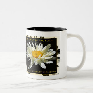 You Are My Hiding Place mug