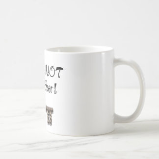 You are not my mother coffee mug