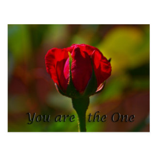 you are the one postcard