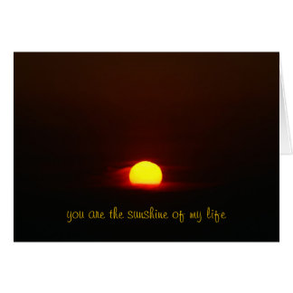 you are the sunshine of my life card