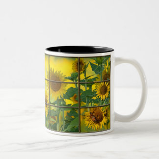 You are the sunshine of my life Two-Tone coffee mug
