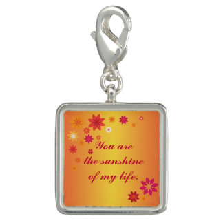 You are the Sunshine Photo Charms