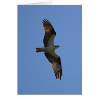 """""""You Can Fly!"""" Greeting Card, Poem Inside Card"""