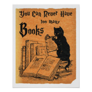 You Can Never Have Too Many Books Cat Poster