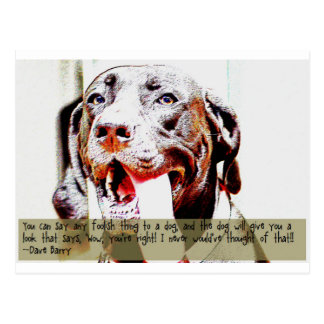 You can say any foolish thing to a dog... postcard