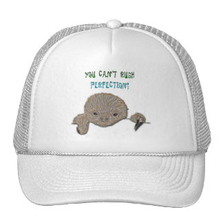 You Can t Rush Perfection Baby Sloth Mesh Hats