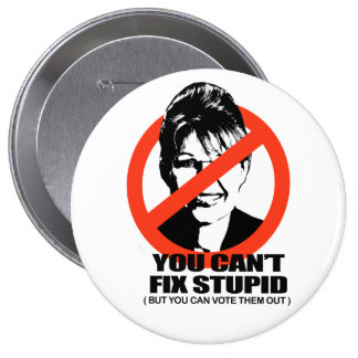 You can't fix stupid, but you can vote them out pin