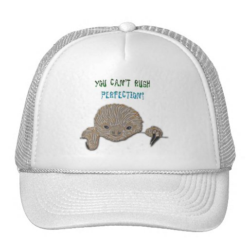 You Can't Rush Perfection Baby Sloth Mesh Hats