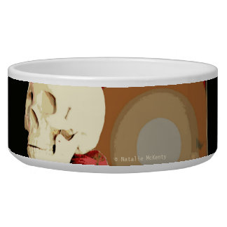 You can't take it with you Ceramic Pet Bowl
