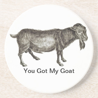 You Got My Goat - COASTERS
