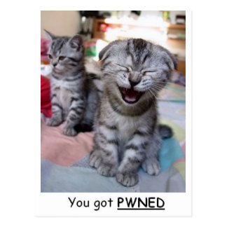 You got PWNED Postcard