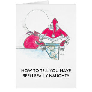 Dirty christmas cards photocards invitations more you have been naughty card m4hsunfo