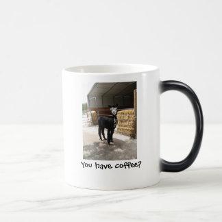 You have coffee? mug
