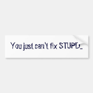 You just can't fix STUPID... Bumper Sticker