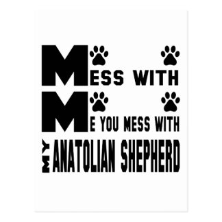 You mess with my Anatolian Shepherd Postcard