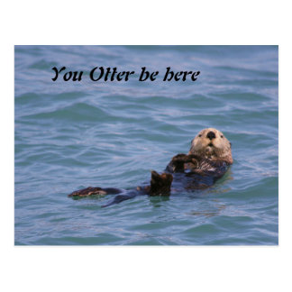 You Otter be here Postcard