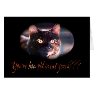 You're How Old Kitty Cat Birthday Card