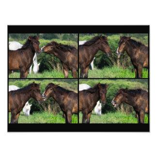 You taste like a horse Harry. Photo Art