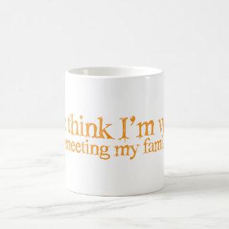 You think I'm strange . try meeting my family Basic White Mug