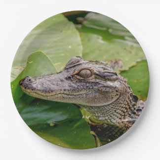 Young Alligator 9 Inch Paper Plate