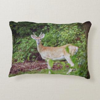Young Buck in Velvet Accent Pillow