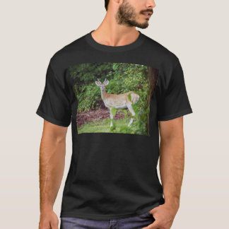 Young Buck in Velvet T-Shirt