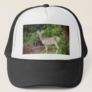 Young Buck in Velvet Trucker Hat