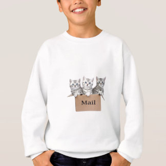Young cats in cardboard box with word Mail Sweatshirt